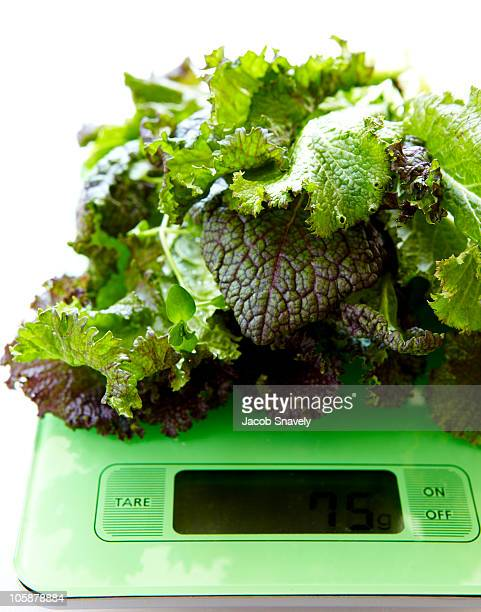 portioned fresh greens on electric scale. - newhealth stock photos and pictures