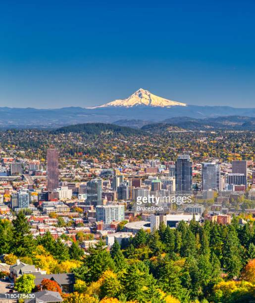 portland oregon skyline with mt. hood in autumn - portland oregon stock pictures, royalty-free photos & images