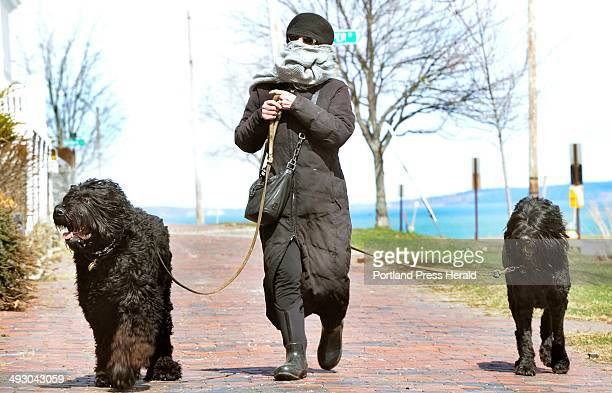 Portland resident Judith Pollack and her black russian terriers Bohdan and Yeva brace against a strong wind as they walk along the Eastern Prom today...