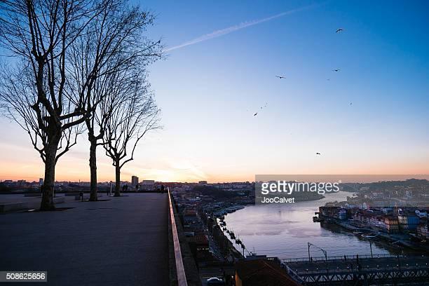 Porto Douro River at sunset
