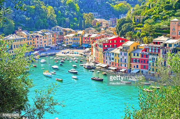 portofino - goiter stock pictures, royalty-free photos & images