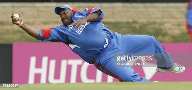 Bermuda Cricketer Dwayne Leverock successfully dives to take the catch of India Cricketer Robin Uthappa off Malachi Jones during a group stage match...