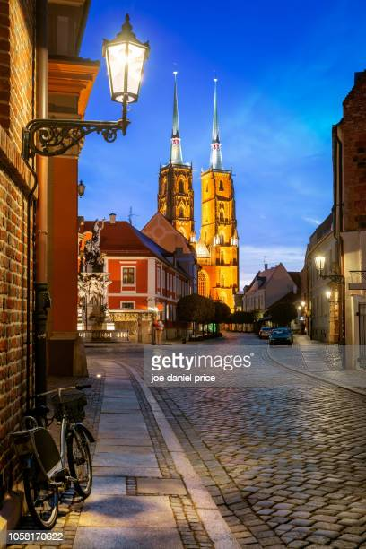 Portrait, Cathedral of St. John the Baptist, River Oder, Wroclaw, Poland