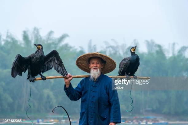 pescador tradicional chino del retrato con cormoranes, pesca, río li china - vestido tradicional fotografías e imágenes de stock