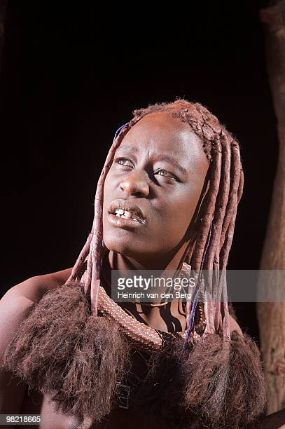 Portrait if a Himba woman showing hair adornment, Van Zyl��ôs Pass area,Kaokoland, Namibia