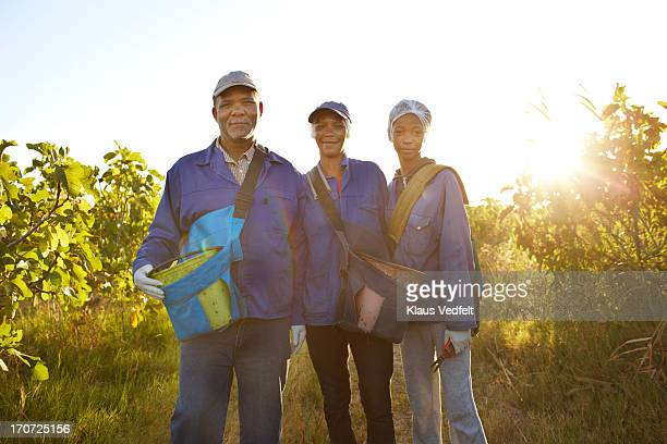 Portrait of 3 pickers at fruit farm
