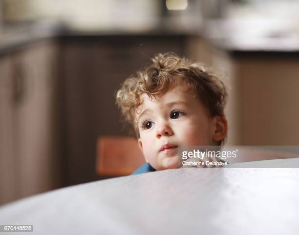 portrait of a 2 years old boy in the kitchen - 2 3 years stock pictures, royalty-free photos & images