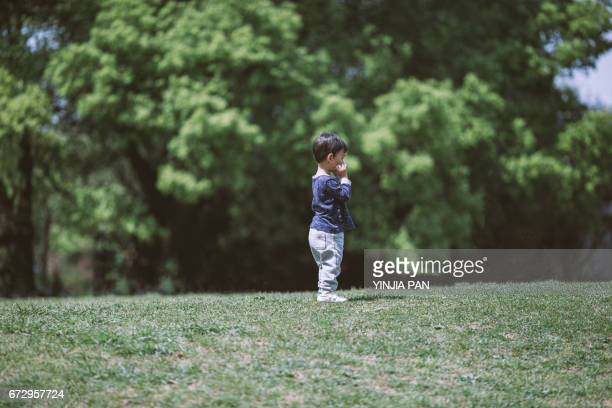 Portrait of a baby boy standing on the grass