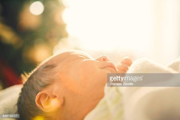 portrait of a baby - vida imagens e fotografias de stock