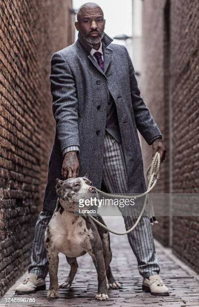 portrait of a black vintage gangster man in an old city with his dog - historical clothing stock pictures, royalty-free photos & images