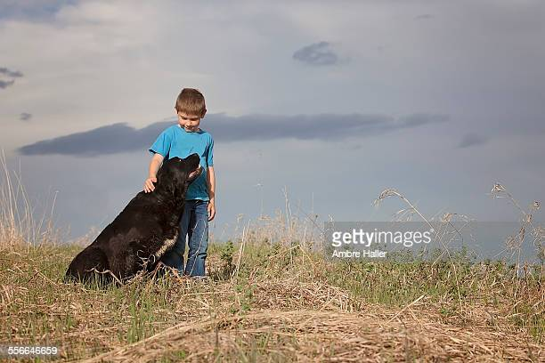 portrait of a boy and his dog - labrador preto imagens e fotografias de stock