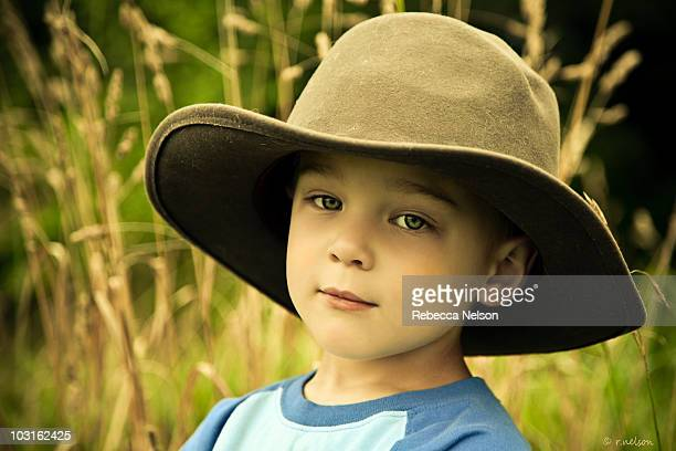 portrait of a boy - rebecca nelson stock pictures, royalty-free photos & images