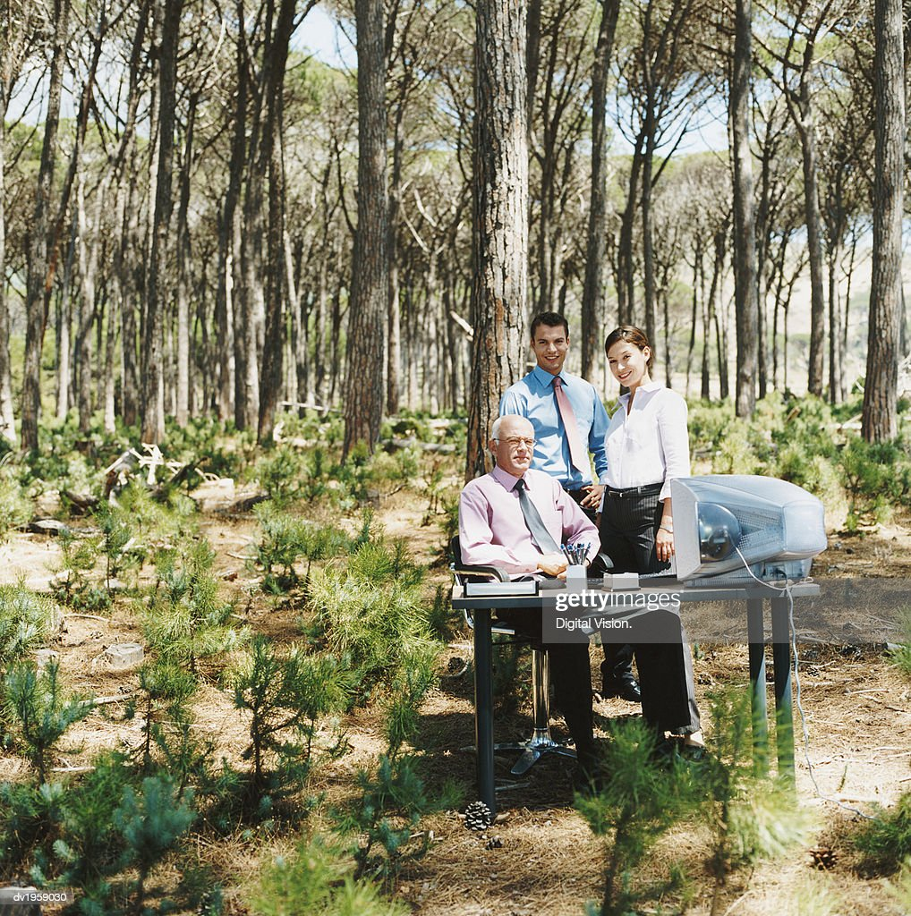 Portrait of a Businesswoman and Businessmen by a Desk in a Forest : Stock Photo
