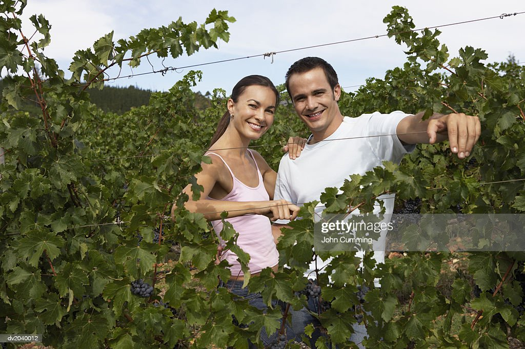 Portrait of a Couple Standing in a Vineyard : Stock Photo