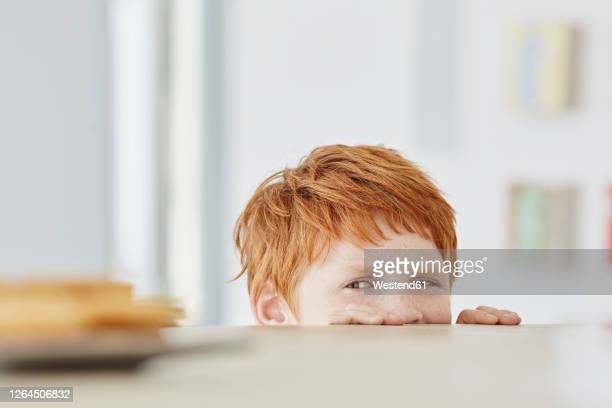 portrait of a cute boy at home looking at plate on table - greed stock pictures, royalty-free photos & images