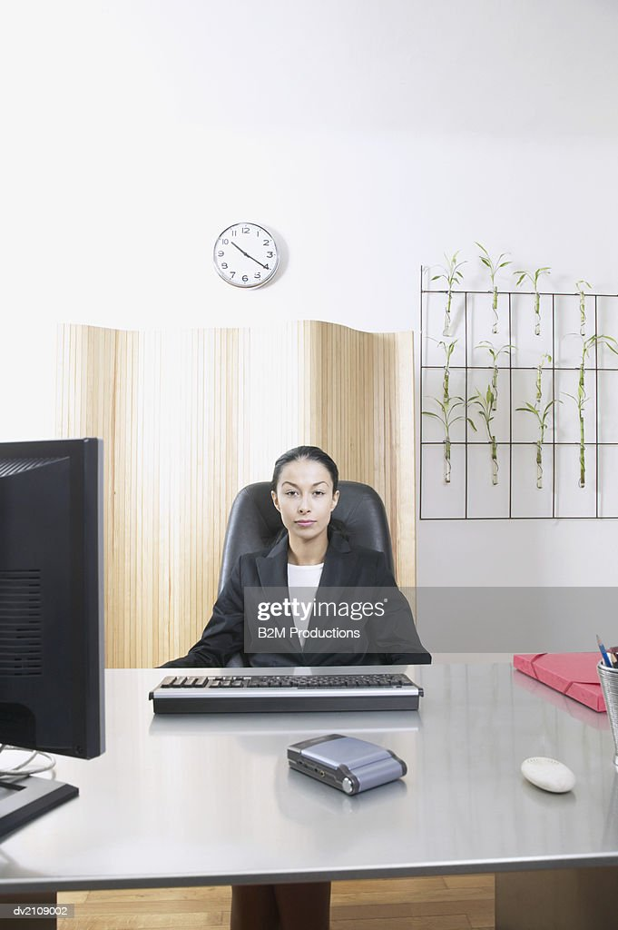 Portrait of a Female Business Executive Sitting at a Desk : Stock Photo