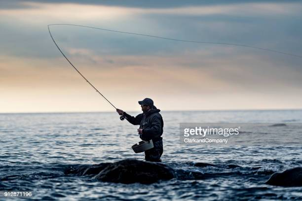 portrait of a fly fisherman looking for sea trout - fly casting stock pictures, royalty-free photos & images