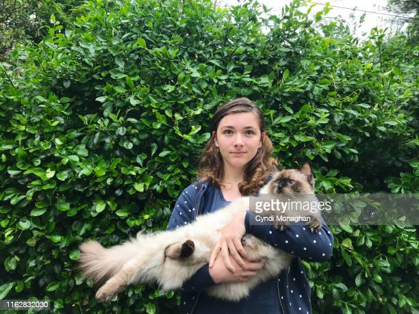 portrait of a girl holding an enormous ragdoll cat - hairy bush stock pictures, royalty-free photos & images
