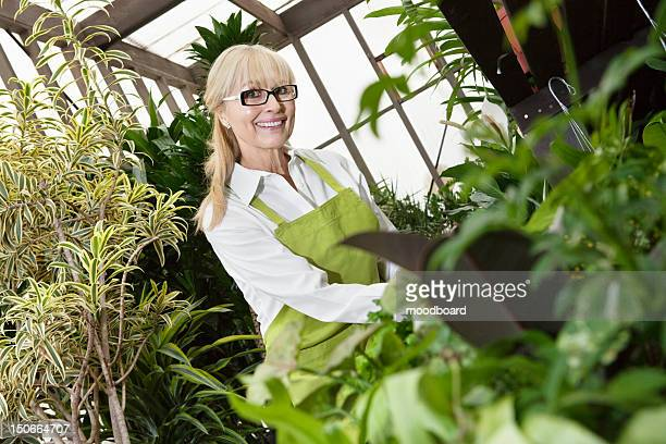 portrait of a happy senior gardener cultivating plants in greenhouse - panoramica verticale foto e immagini stock