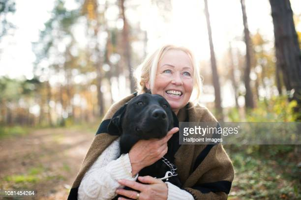 a portrait of a happy senior woman with a dog in autumn nature. - autumn dog stock pictures, royalty-free photos & images