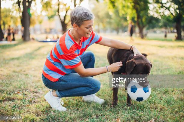 portrait of a labrador and his owner playing in the park - off leash dog park stock pictures, royalty-free photos & images