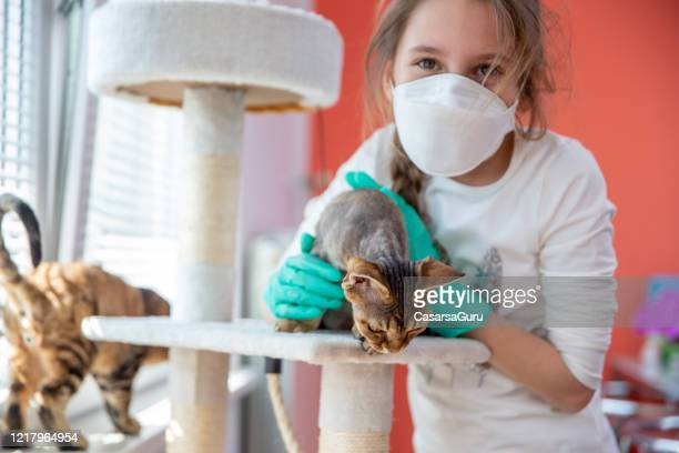 portrait of a little girl and her cat at home during coronavirus pandemic - stock photo - cat face mask stock pictures, royalty-free photos & images