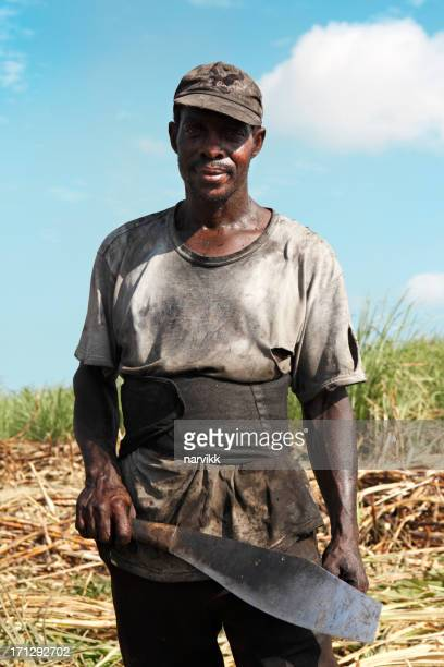 portrait of a man cutting sugar cane - machete stock pictures, royalty-free photos & images