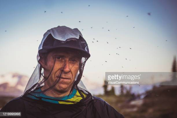 portrait of a man getting swarmed by mosquitos - netting stock pictures, royalty-free photos & images