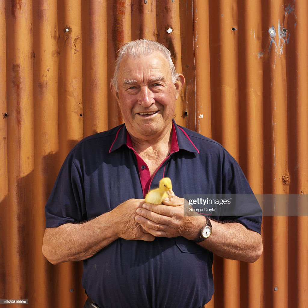 portrait of a man holding a duckling : Stock Photo