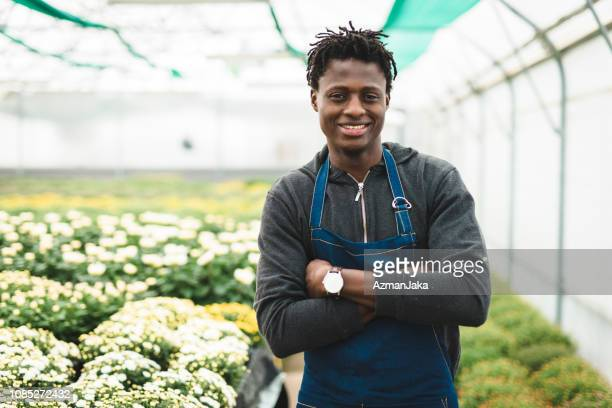 portrait of a man with arms crossed and looking at camera in the greenhouse - part time job stock pictures, royalty-free photos & images
