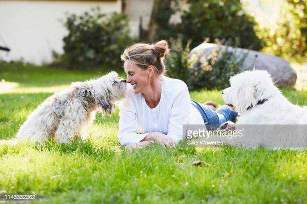 portrait of a mature content woman getting kisses from her dog in her garden - hund stock-fotos und bilder