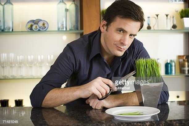 portrait of a mid adult man holding a pair of scissors at a bar counter - wheatgrass stock photos and pictures