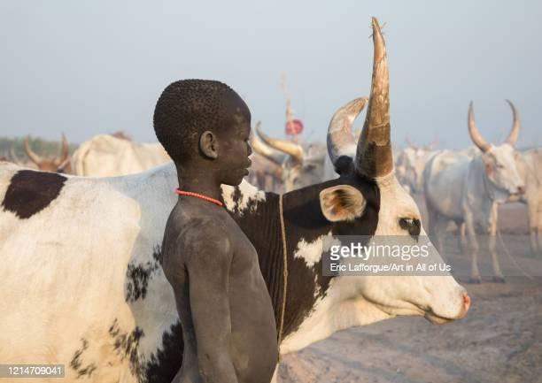 Portrait of a Mundari tribe boy in a cattle camp Central Equatoria Terekeka South Sudan on February 12 2020 in Terekeka South Sudan