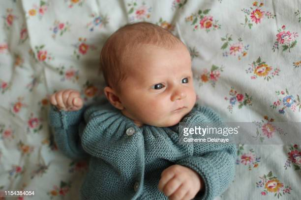 portrait of a new born baby girl - cardigan sweater stock pictures, royalty-free photos & images