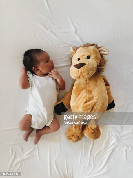 portrait of a newborn baby and his favorite toy - baby onesie stock photos and pictures