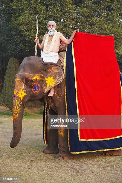Portrait of a priest riding an elephant