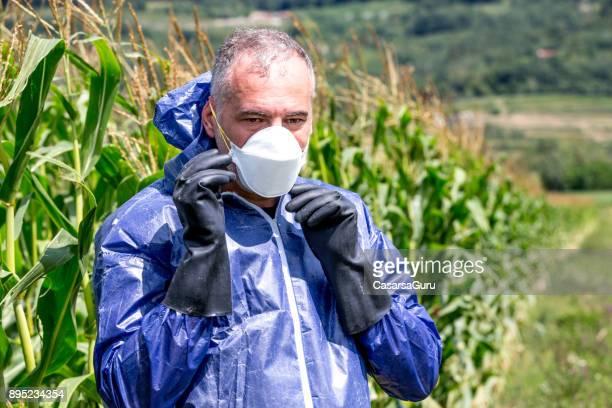 Portrait of a Researcher in Protective Workwear in Corn Field