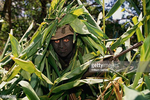 A portrait of a Salvadoran guerrilla who uses tropical leaves as camouflage during military exercises