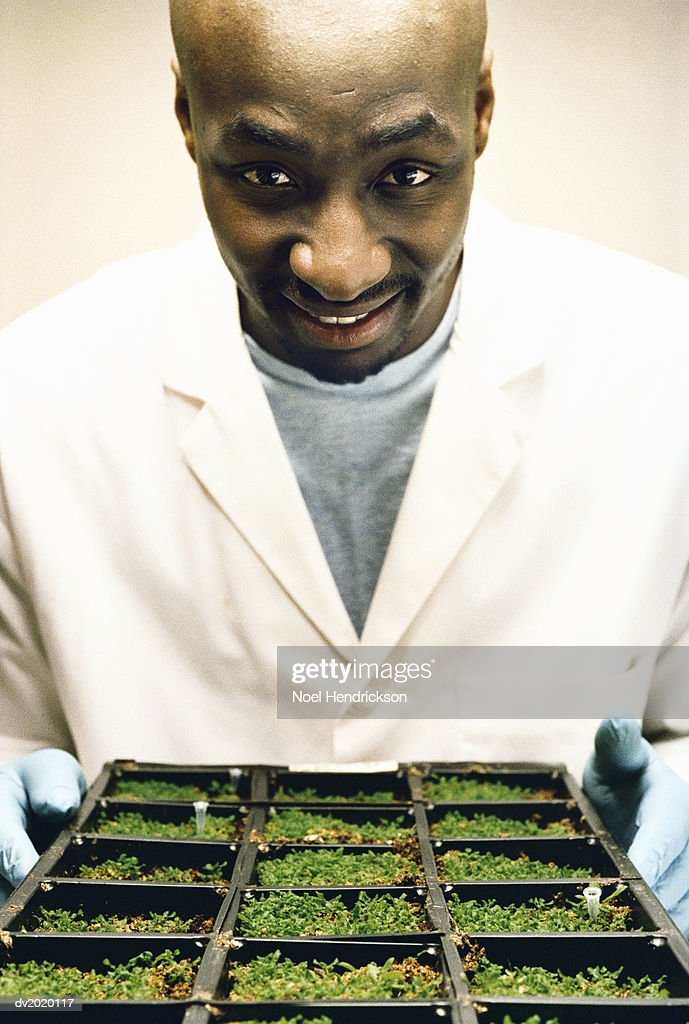 Portrait of a Scientist Holding Soil Samples : Stock Photo