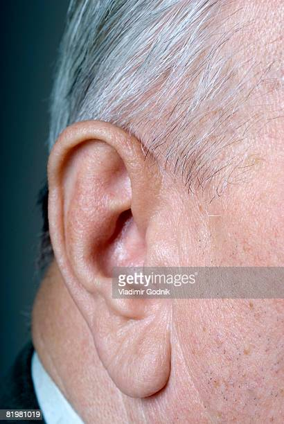 portrait of a senior adult man?s ear, detail, close up - earlobe stock photos and pictures