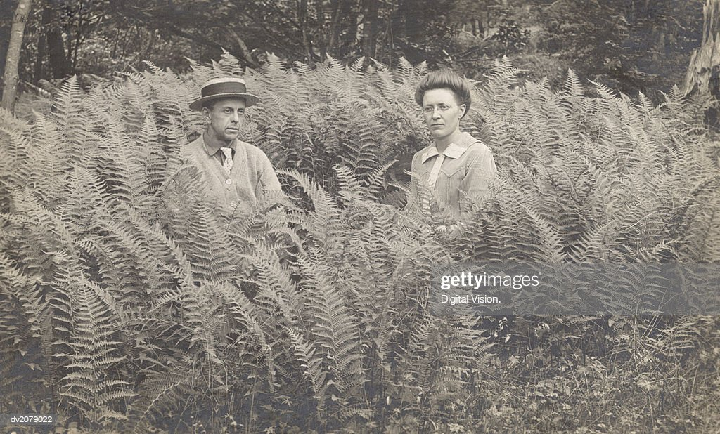 Portrait of a Serious Looking Couple Sitting in Fern : Stock Photo