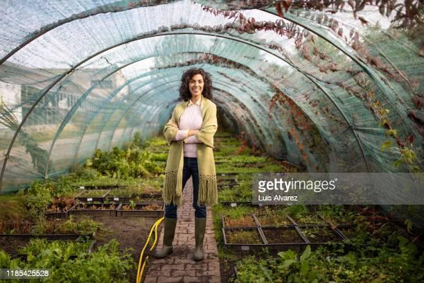 portrait of a smiling mid adult woman in greenhouse - botánica fotografías e imágenes de stock