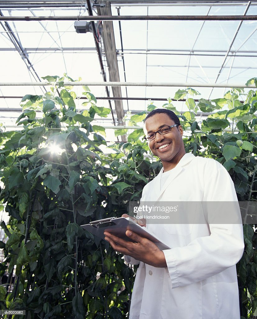 Portrait of a Smiling Scientist Holding a Clipboard by a Large Plant in a Green House : Stock Photo