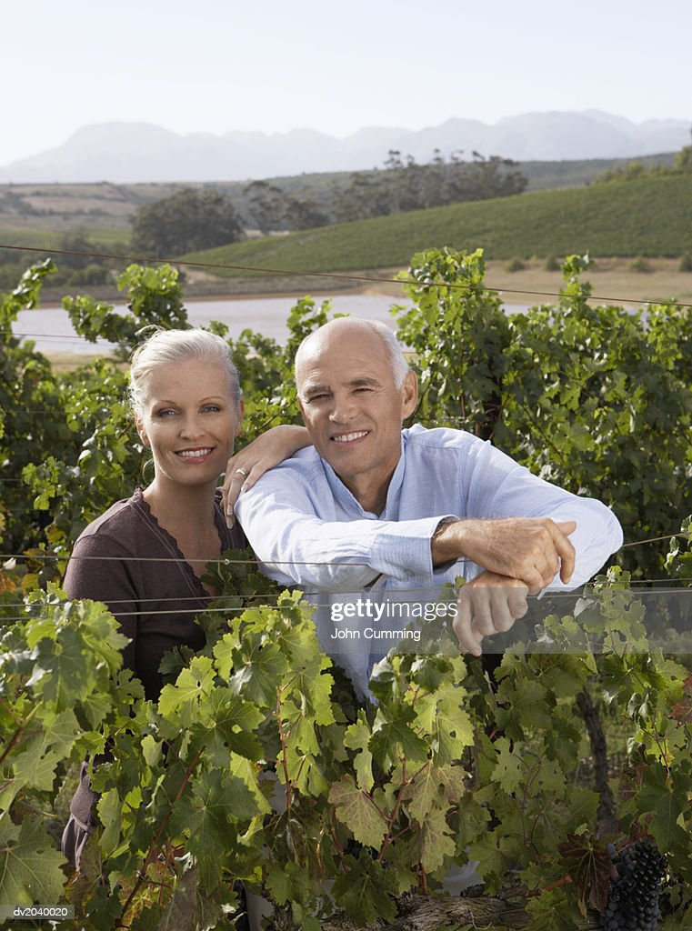 Portrait of a Smiling, Senior Couple Standing in a Vineyard : Stock Photo