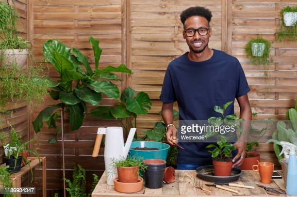 portrait of a smiling young man repotting a plant on his terrace - green thumb stock pictures, royalty-free photos & images