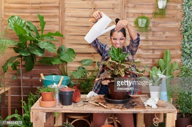 portrait of a smiling young woman gardening on her terrace - jardinier humour photos et images de collection