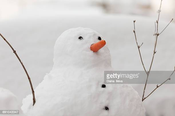portrait of a snowman in the garden with a carrot nose - snowman stock pictures, royalty-free photos & images