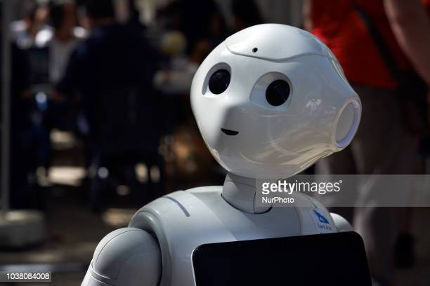 Portrait of a SoftBank robot A robots race took place in Toulouse Machines are either cars or walking robots They were supposed to run a 110 meters...