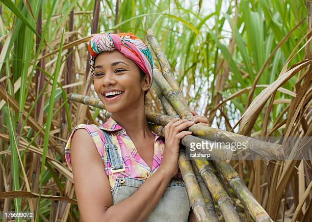 portrait of a sugar cane worker - sugar cane stock pictures, royalty-free photos & images