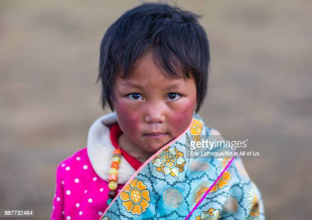 Portrait of a tibetan nomad girl with her cheeks reddened by the harsh weather Qinghai province Tsekhog China on October 28 2017 in Tsekhog China